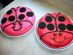 lady bug cake simple cake decorating idea