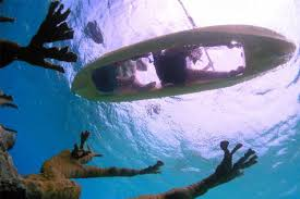 clear kayak clear bottom kayak and snorkel bonaire tours