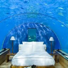 Best Water Beds Images On Pinterest  Beds Spaces And - Water bunk beds