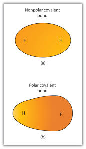 ch150 chapter 4 covalent bonds and molecular compounds chemistry