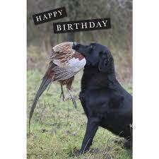 birthday cards charles sainsbury plaice