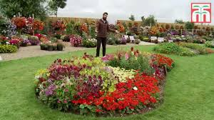 Fragrant Bedding Plants Annual Bedding Plants Chicago Lawn Care U0026 Landscaping