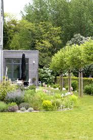 Kies Garten Gelb Dieartigeblog Garten Terrasse Kiesgarten Platanen
