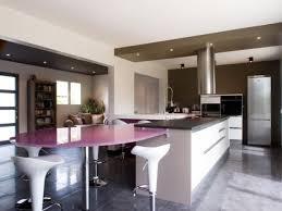 placo hydrofuge cuisine décoration faux plafond cuisine ilot 79 rouen 10000419 adulte