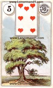 lenormand cards meaning the tree software for card reading