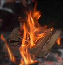 everything you need to know about burning wood fire pit wood 101