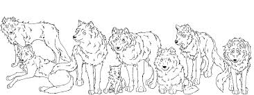 silver falcon wolf pack wip by java wolf on deviantart