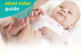 What Does Light Colored Stool Mean Stool Color Overview Johns Hopkins Children U0027s Center