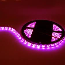 pink led lights 12v