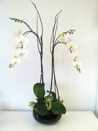 Orchid Flower Arrangements Two Orchids In A Vase In Glendale Ca Honey Bee Flowers