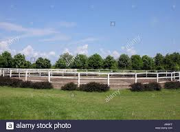 landscape with paddock trees and blue sky stock photo royalty