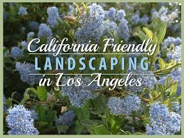 California Landscaping Ideas California Friendly Landscaping In Los Angeles