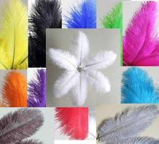 ostrich feather l shade craft white ostrich feathers ebay