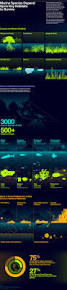219 best oceanography and marine biology images on pinterest