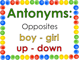 Synonym For Map Antonyms Lessons Tes Teach