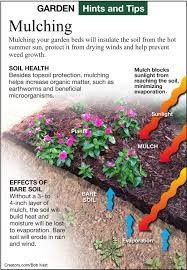 working with garden mulch siouxland homes siouxcityjournal com