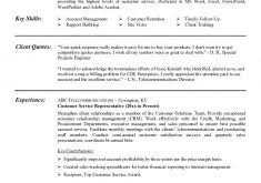 Example Of Excellent Resume by Examples Resumes