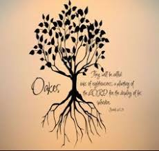 9 best projects to try images on a tree bible verses