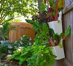 Vegetable Garden Containers by Wall Garden Containers Gardening Ideas