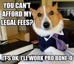 Lawyer Dog Meme - the louisiana supreme court s lawyer dog ruling is unintentionally