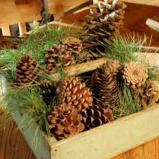 Small Wooden Boxes For Centerpieces by Simple Centerpieces How To Make A Centerpiece