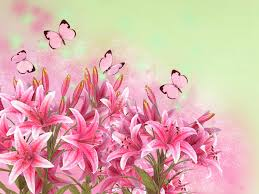 floral background with lilies and butterflies stock illustration