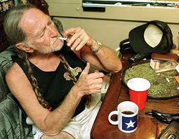 willie nelson fan page willie nelson the family playing radio city music hall w levon