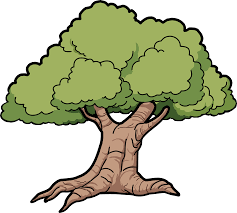 cartoon oak tree clipart cliparts and others art inspiration
