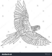hand drawn parrot isolated on transparent stock vector 353736287