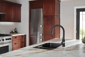 black faucet with stainless steel sink i need your thoughts black or silver kitchen faucet dans le within