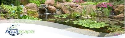 Aquascape Canada Aquascape 99765 Micro Pond Kit 8 By 11 Feet Amazon Ca Patio