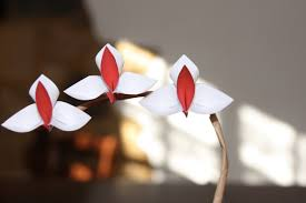origami orchid tutorial origami tutorial orchid youtube