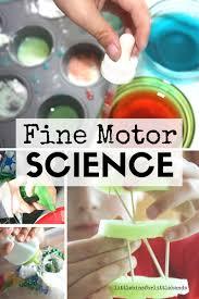 thanksgiving sensory bin cranberry science thanksgiving activities fine motor play