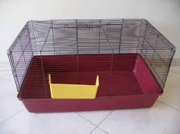 gabbie per conigli nani usate coniglio nano gabbia clasf