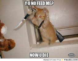 Feed Me Meme - feed me