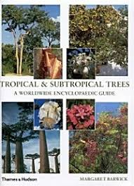 Trees Worldwide Tropical Subtropical Trees A Worldwide Encyclopaedic Guide