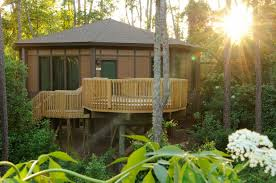 disney treehouse villas pictures our meeting rooms