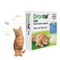 Obat Cacing Kucing Di Petshop jual obat cacing kucing drontal di lapak segitu petshop bekasi