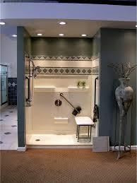 Bathroom Grab Bars Placement 41 Best Barrier Free Shower Images On Pinterest Best Bath Bath