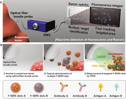 endoscopic imaging using surface enhanced raman scattering