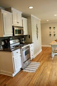 Interior Kitchen Colors 90 Best Kitchen Images On Pinterest Home Kitchen Redo And