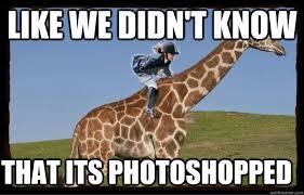 Drunk Giraffe Meme - surprised giraffe meme giraffe best of the funny meme