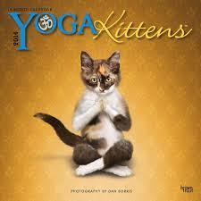 Grumpy Cat Mini Wall Calendar - our 10 favorite cat calendars for 2014 catster