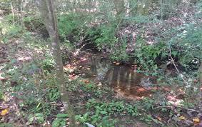 sunny brook farm tract u2013 110 acres u2013 butler