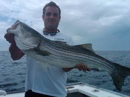 laura jay charters 7 10 striped bass fishing cape cod fishing