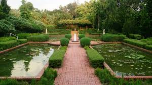 Singapore Botanic Gardens Location November Marks The Singapore Botanic Gardens Children S