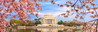 cheap flights from colorado springs to washington d c frontier