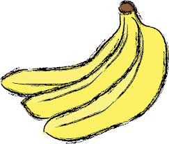 free vector graphic banana yellow fruit food color free