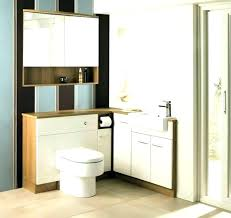 painting ideas for bathrooms painting bathroom cabinets color ideas manujith me