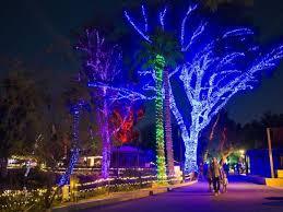 phoenix zoo lights military discount january 2017 festivals around metro phoenix and arizona